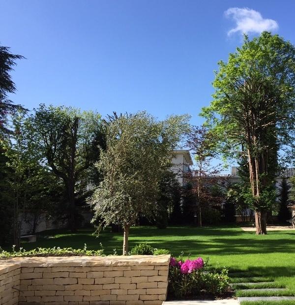 Autres scènes de jardin